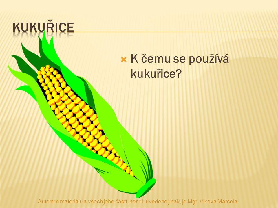 kukuřice K čemu se používá kukuřice