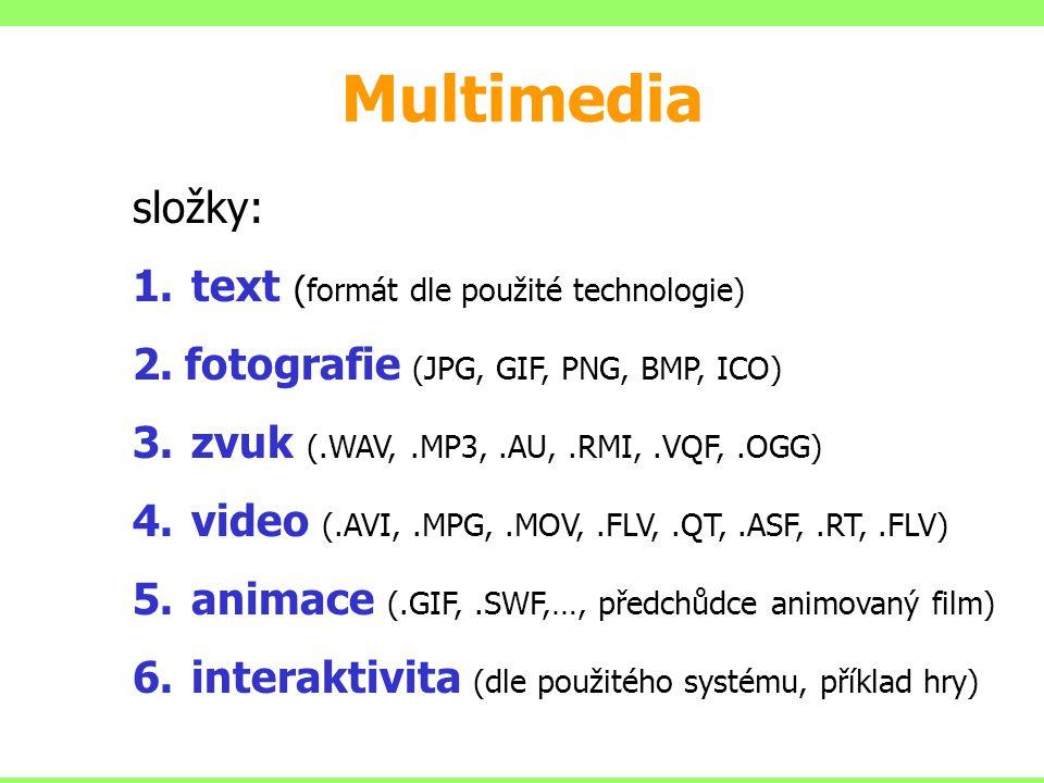 Multimedia složky: text (formát dle použité technologie)