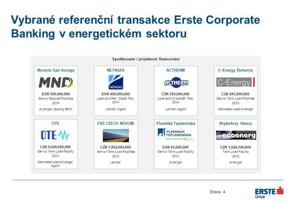 Syndikované / projektové financování