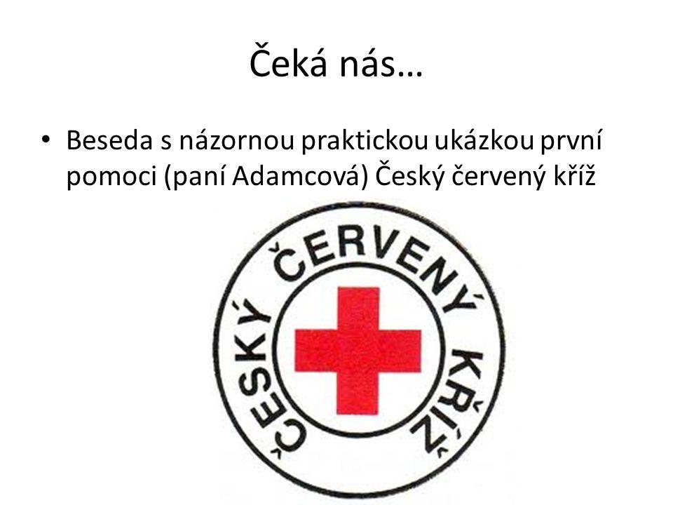 Čeká nás… Beseda s názornou praktickou ukázkou první pomoci (paní Adamcová) Český červený kříž