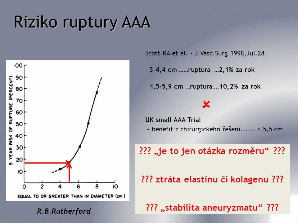 "Riziko ruptury AAA ""je to jen otázka rozměru"