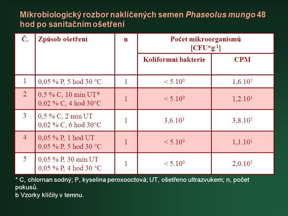 Mikrobiologický rozbor naklíčených semen Phaseolus mungo 48 hod po sanitačním ošetření