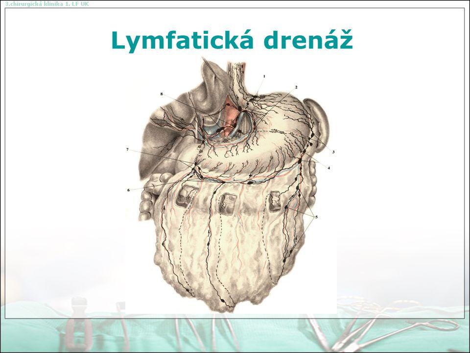 Lymfatická drenáž