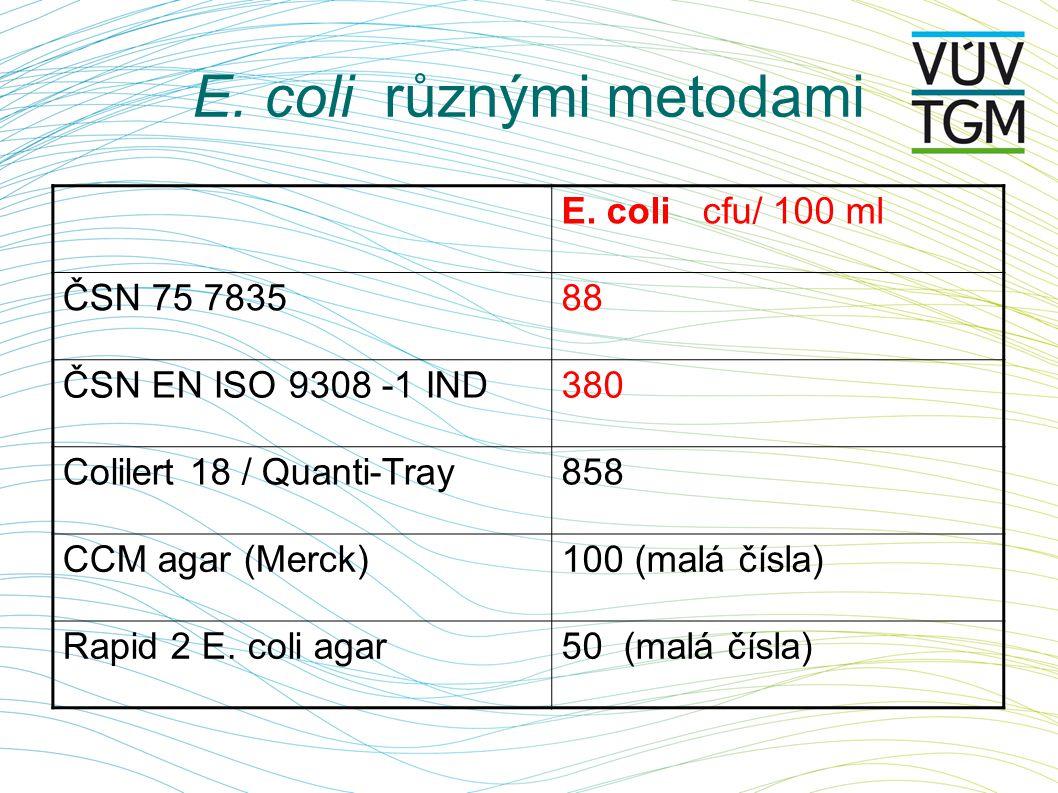 E. coli různými metodami