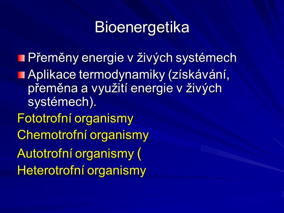 Bioenergetika Přeměny energie v živých systémech