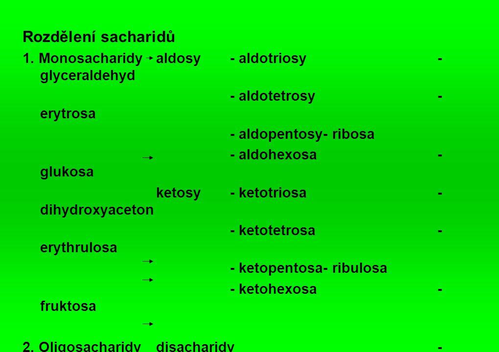 Rozdělení sacharidů 1. Monosacharidy aldosy - aldotriosy - glyceraldehyd. - aldotetrosy - erytrosa.