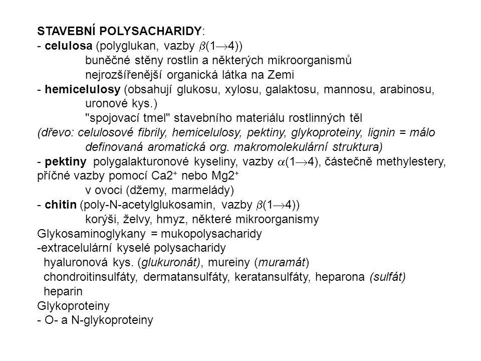 STAVEBNÍ POLYSACHARIDY: