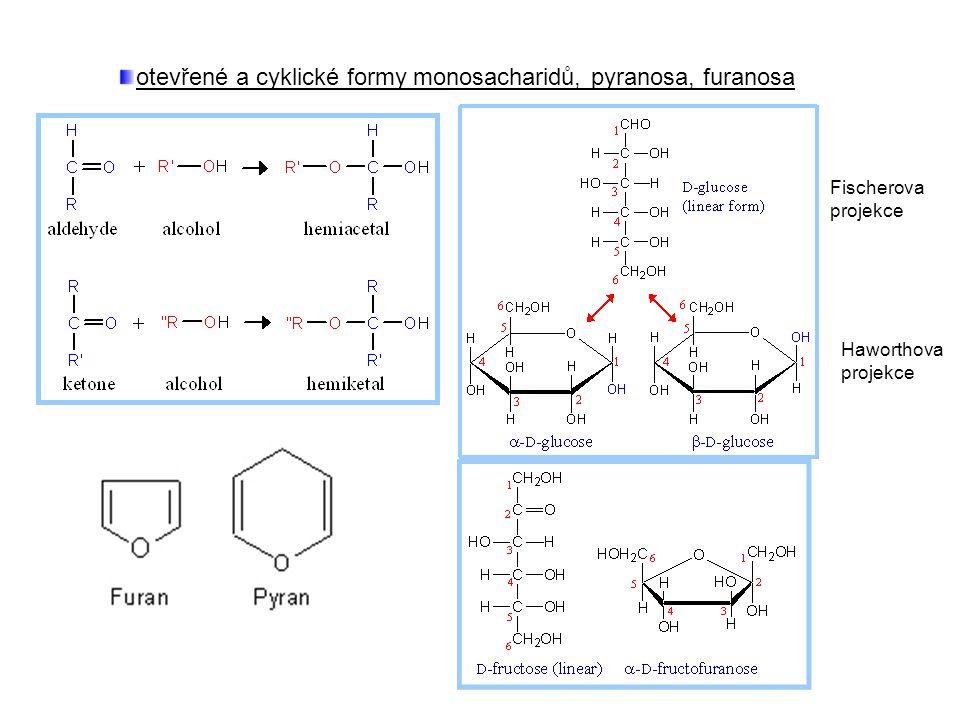 otevřené a cyklické formy monosacharidů, pyranosa, furanosa