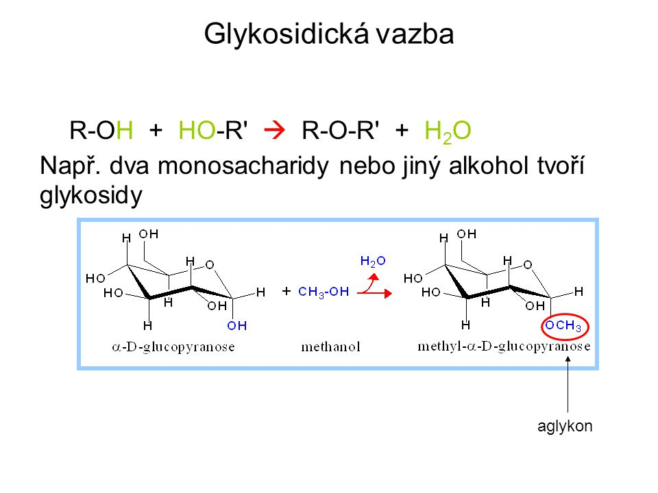 Glykosidická vazba R-OH + HO-R  R-O-R + H2O