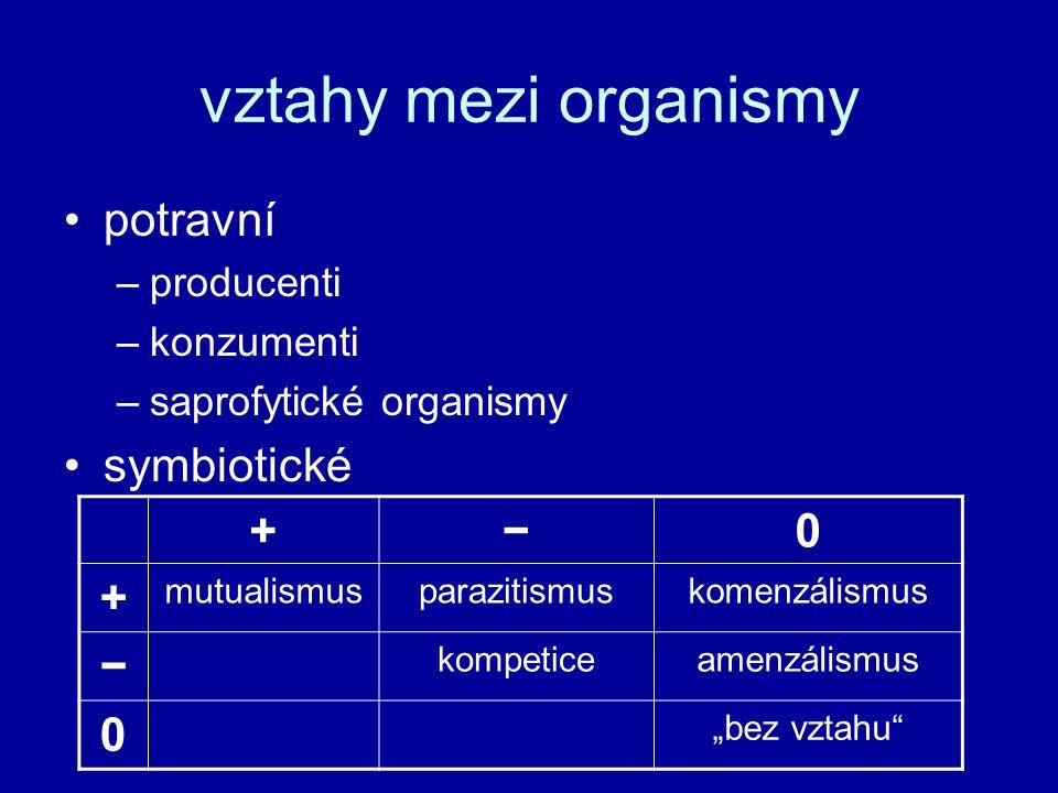 vztahy mezi organismy potravní symbiotické + − producenti konzumenti