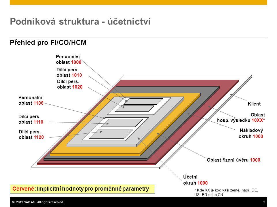 Podniková struktura - účetnictví