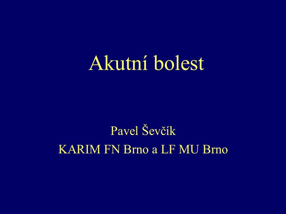 Pavel Ševčík KARIM FN Brno a LF MU Brno