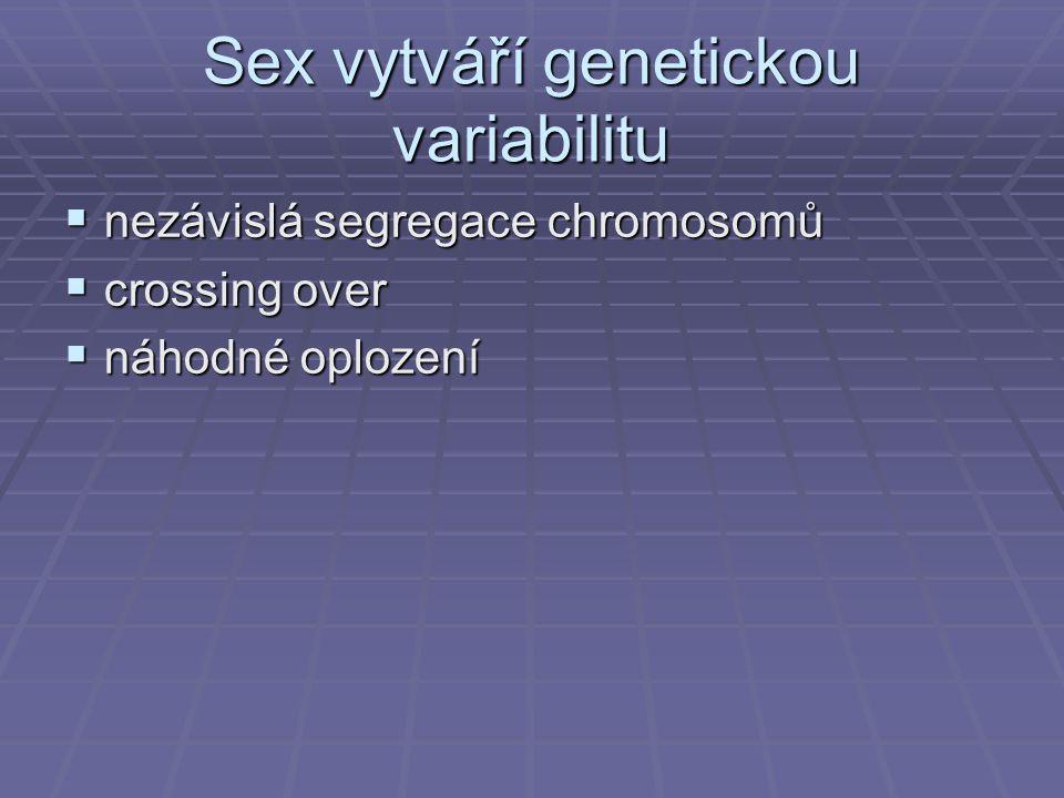 Sex vytváří genetickou variabilitu