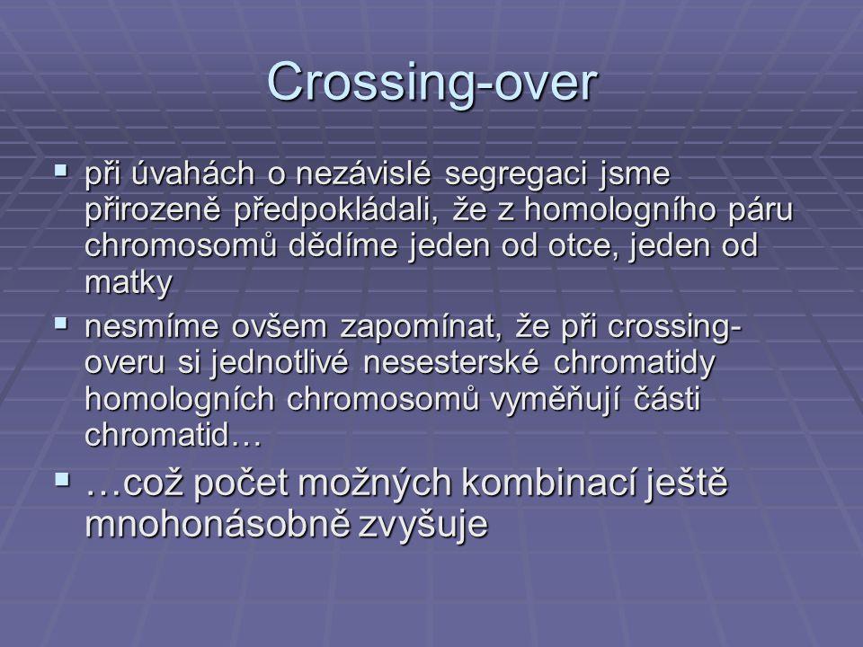 Crossing-over …což počet možných kombinací ještě mnohonásobně zvyšuje