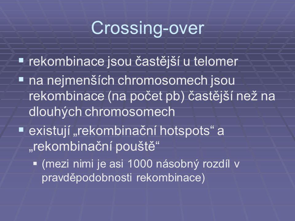 Crossing-over rekombinace jsou častější u telomer