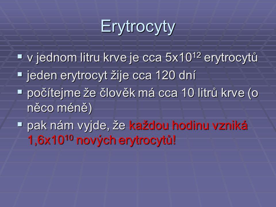 Erytrocyty v jednom litru krve je cca 5x1012 erytrocytů