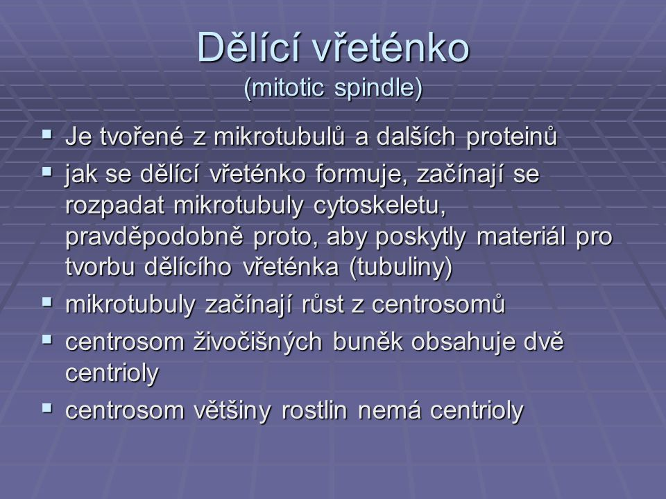 Dělící vřeténko (mitotic spindle)