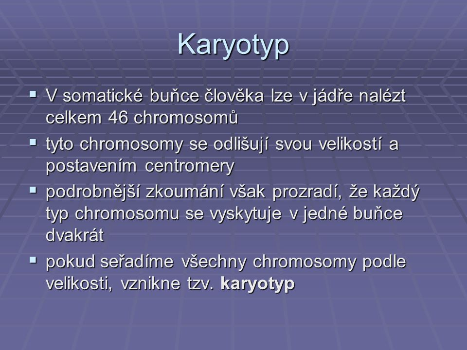 Karyotyp V somatické buňce člověka lze v jádře nalézt celkem 46 chromosomů. tyto chromosomy se odlišují svou velikostí a postavením centromery.