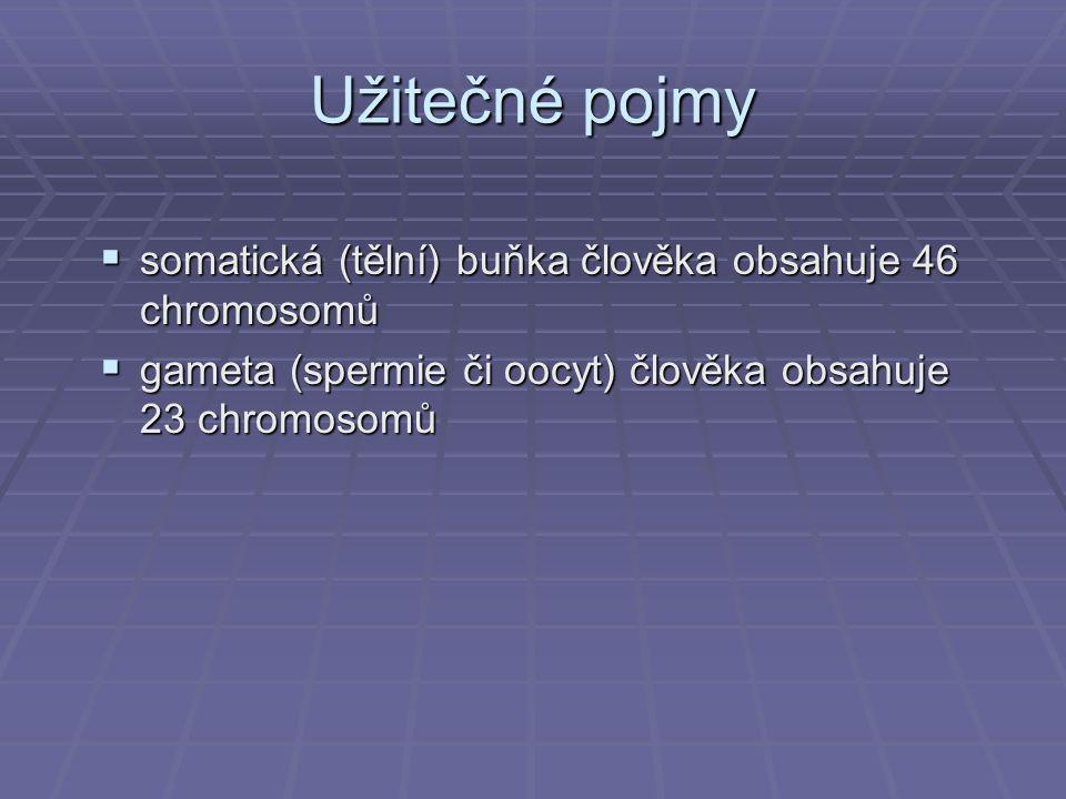 Užitečné pojmy somatická (tělní) buňka člověka obsahuje 46 chromosomů