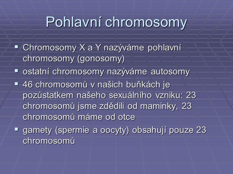 Pohlavní chromosomy Chromosomy X a Y nazýváme pohlavní chromosomy (gonosomy) ostatní chromosomy nazýváme autosomy.
