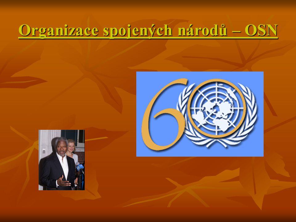 Organizace spojených národů – OSN