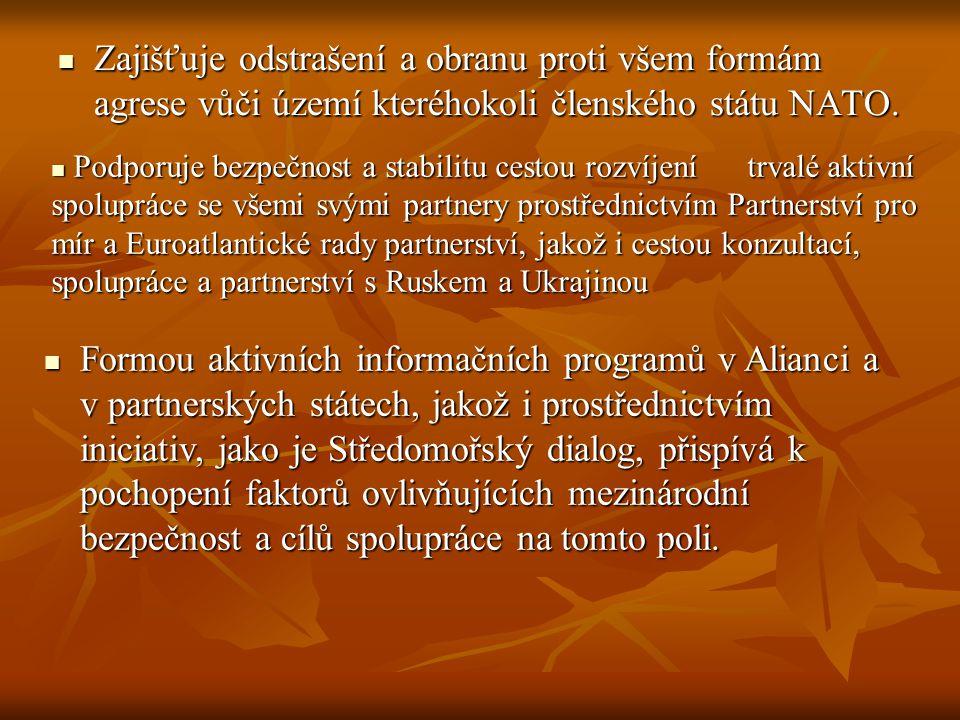 Zajišťuje odstrašení a obranu proti všem formám agrese vůči území kteréhokoli členského státu NATO.