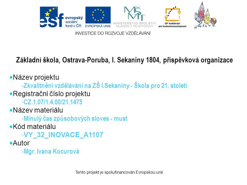 Tento projekt je spolufinancován Evropskou unií.