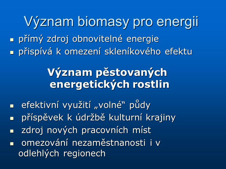 Význam biomasy pro energii