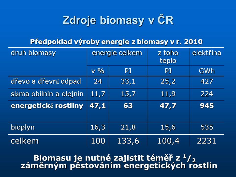 Předpoklad výroby energie z biomasy v r. 2010