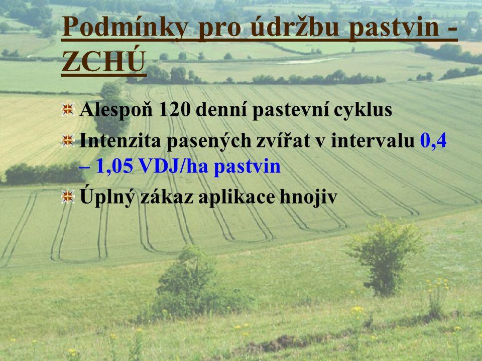 Podmínky pro údržbu pastvin - ZCHÚ