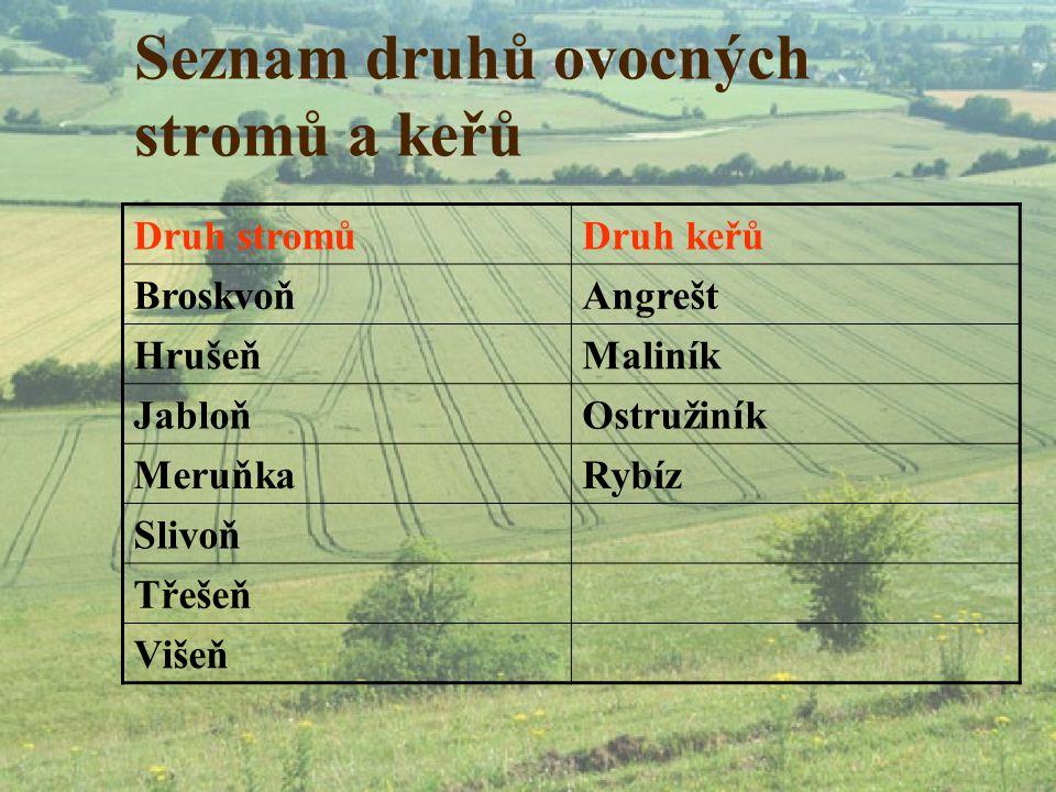 Seznam druhů ovocných stromů a keřů