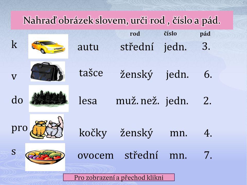 Nahraď obrázek slovem, urči rod , číslo a pád.