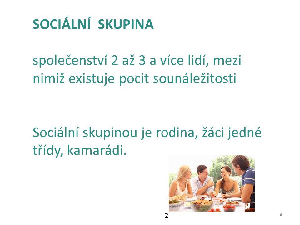 Sociální skupinou je rodina, žáci jedné třídy, kamarádi.
