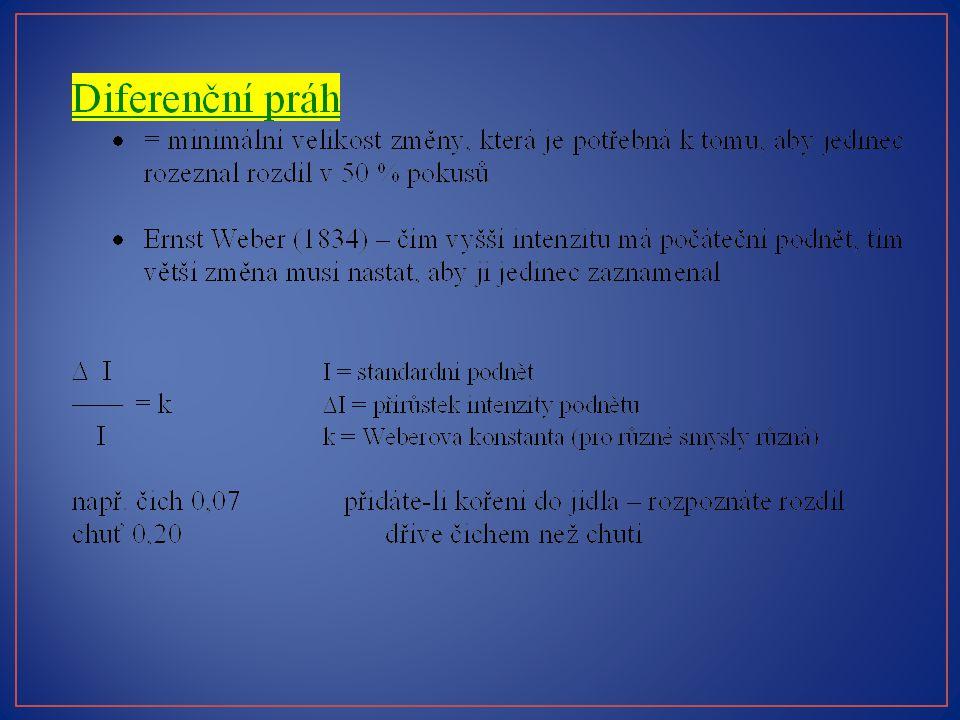 z přednášky prof. Stuchlíkové