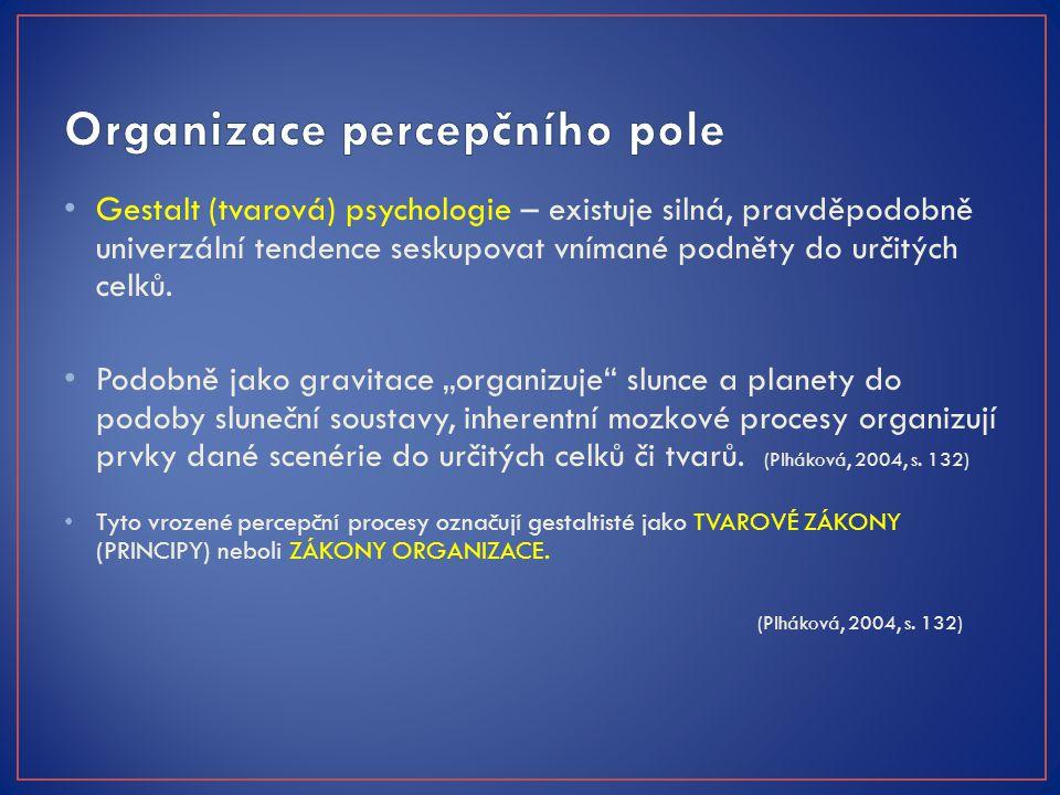 Organizace percepčního pole