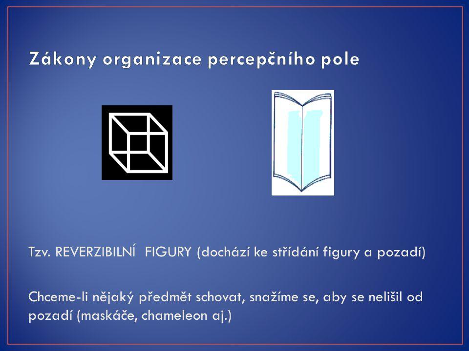 Zákony organizace percepčního pole