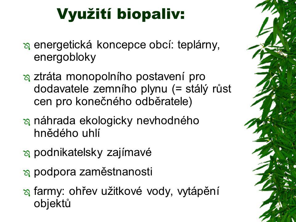 Využití biopaliv: energetická koncepce obcí: teplárny, energobloky