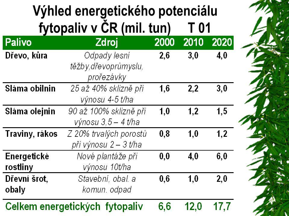 Výhled energetického potenciálu fytopaliv v ČR (mil. tun) T 01
