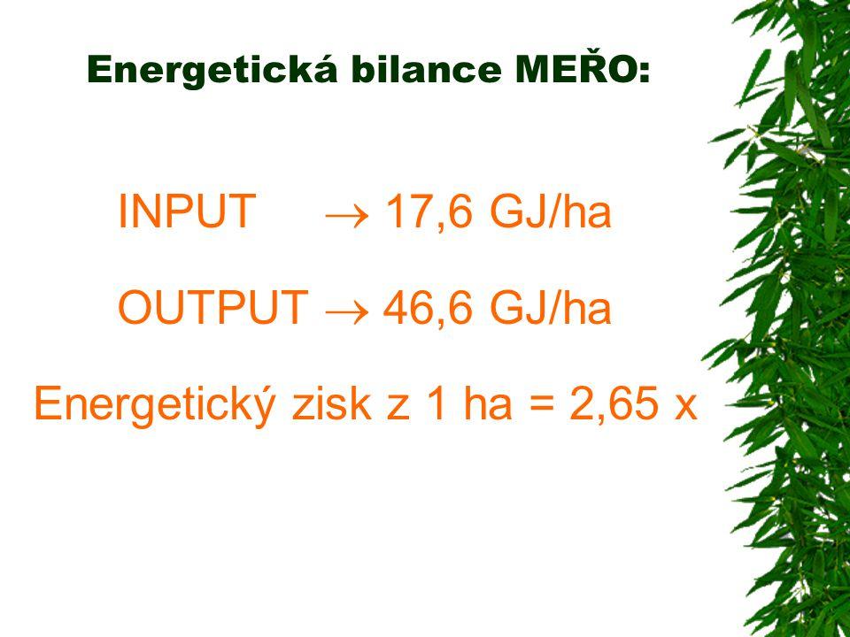 Energetická bilance MEŘO: