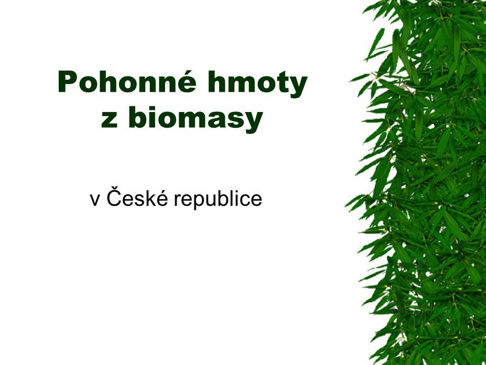 Pohonné hmoty z biomasy