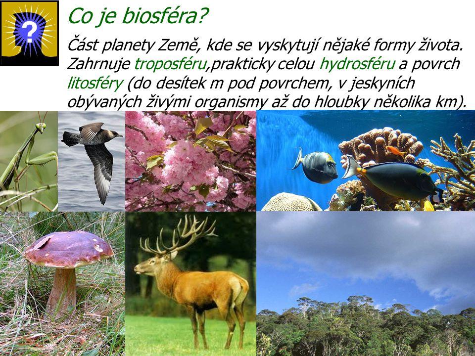 Co je biosféra