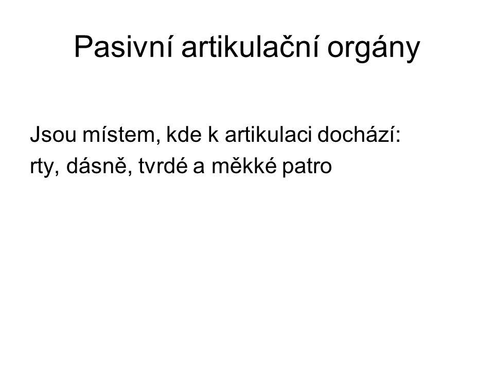 Pasivní artikulační orgány