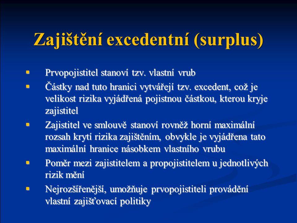 Zajištění excedentní (surplus)