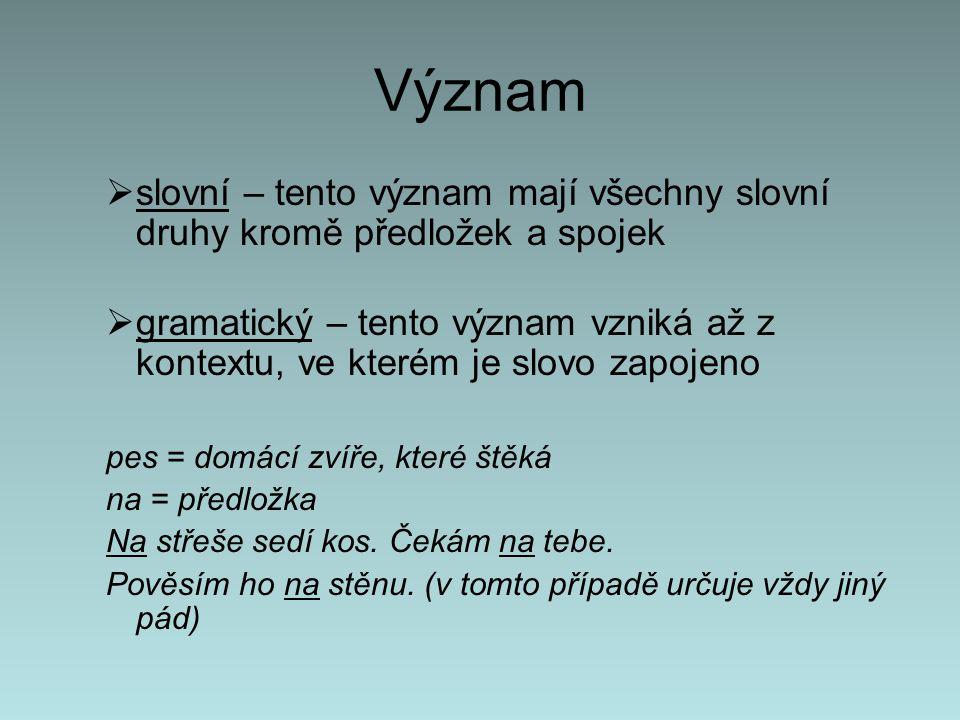 Význam slovní – tento význam mají všechny slovní druhy kromě předložek a spojek.