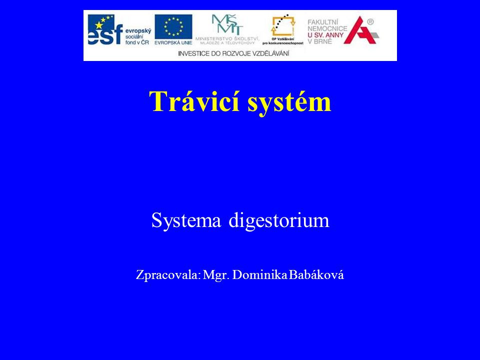Systema digestorium Zpracovala: Mgr. Dominika Babáková