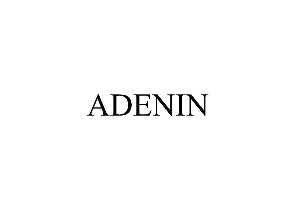 ADENIN