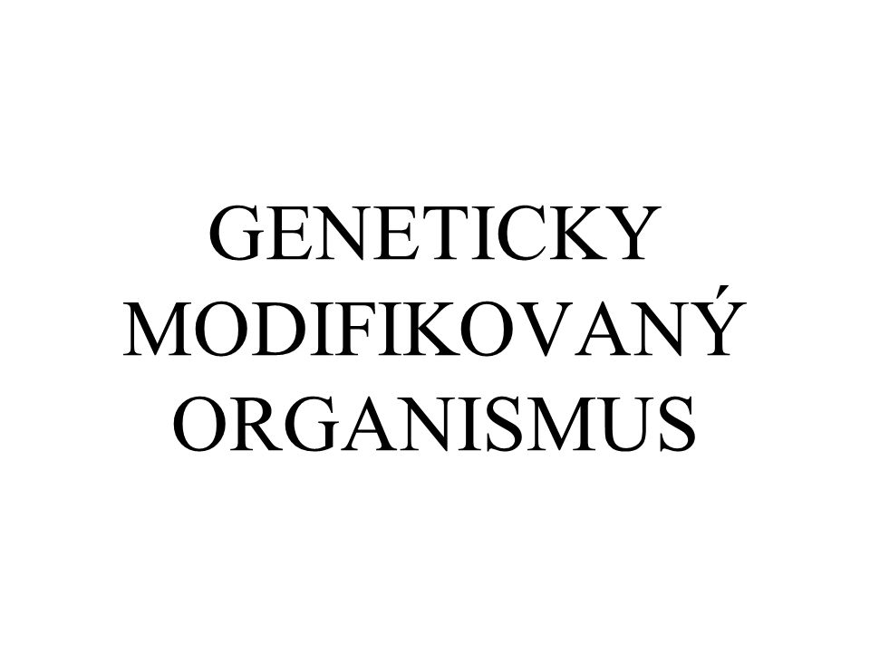 GENETICKY MODIFIKOVANÝ ORGANISMUS