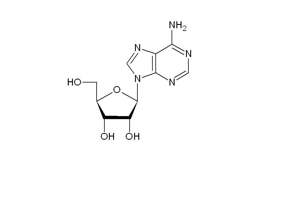 nukleosid