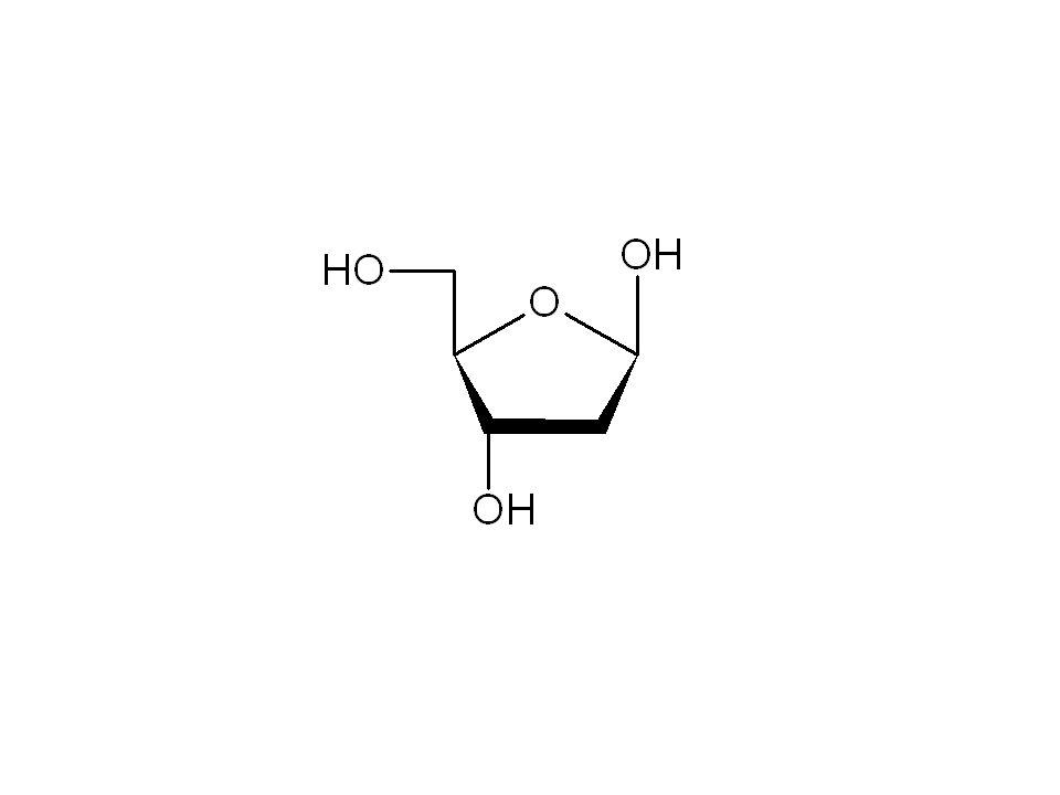 deoxyribóza