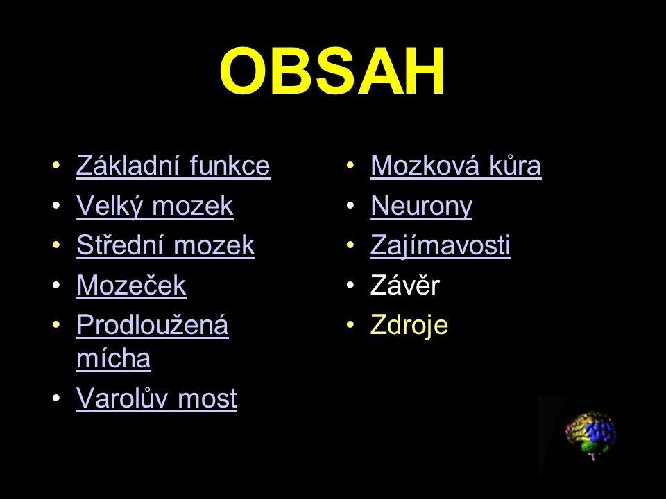 OBSAH Základní funkce Velký mozek Střední mozek Mozeček